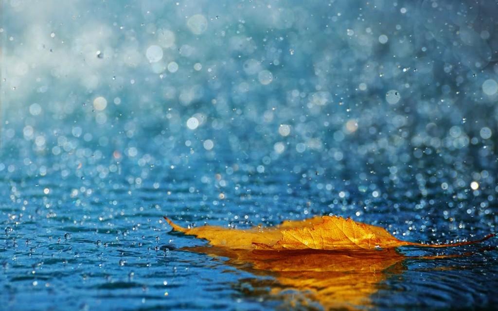 lluvia-de-otoño (1)